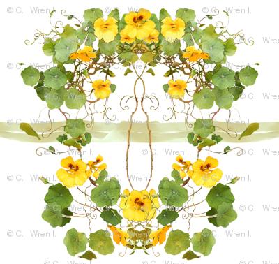 Yellow_Nasturtium_chair_back