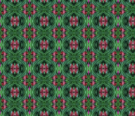 Rspoonflower1043_ed_shop_preview