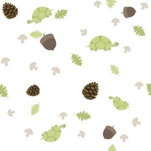 Turtles Wander with Acorns