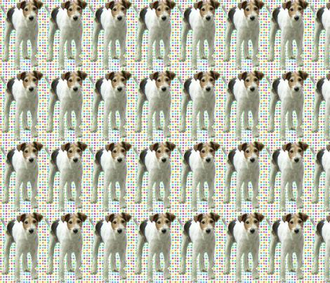 """""""French"""" dog fabric by garotadocalhau on Spoonflower - custom fabric"""