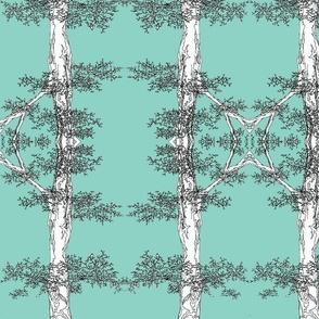 NH Trees