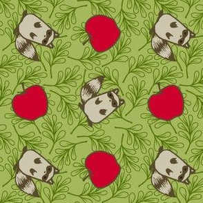 Apples and Raccoons