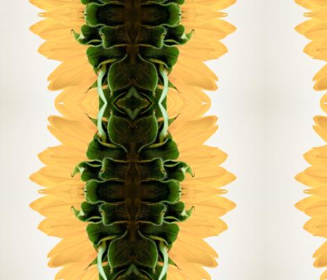 sunflower stripes fabric by emmaleeerose on Spoonflower - custom fabric