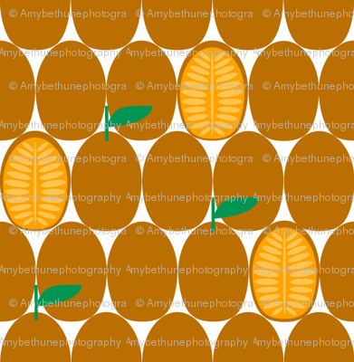 kumquat slice