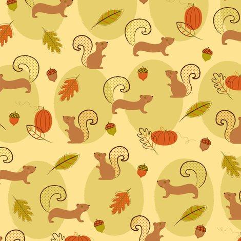 Rsquirrel_fun_shop_preview