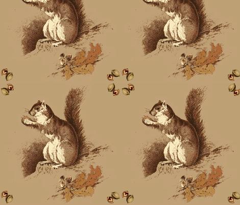 Hazel Squirrel fabric by hauteideas on Spoonflower - custom fabric