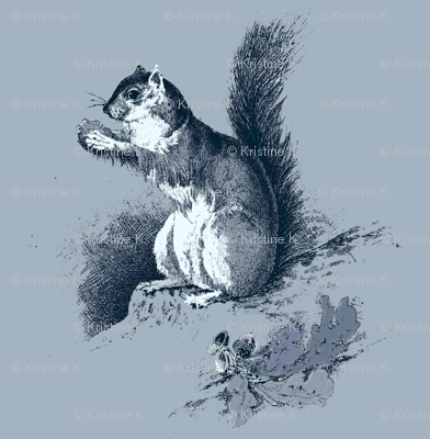 Squirrel in Blue