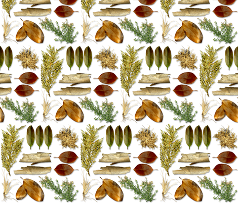 Botanica fabric by shellimakesstudio on Spoonflower - custom fabric