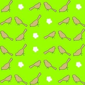 Little_Birds_Spring_green