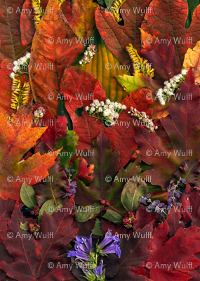 Rleaves__fall__amy__flowers__red__orange_green_collage_001_ed_preview