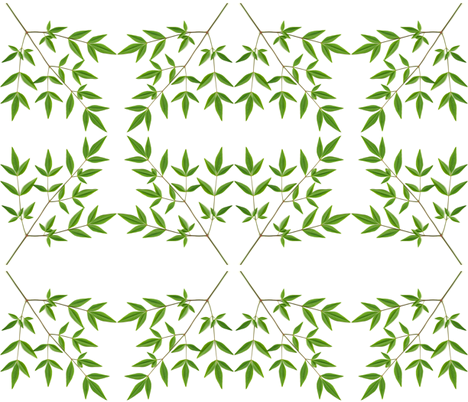 Nandina X fabric by line_deco on Spoonflower - custom fabric
