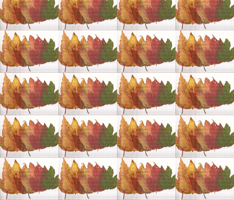 LineDancing Leaves  fabric by macnutt on Spoonflower - custom fabric