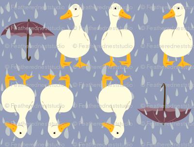 rainy_day_ducks