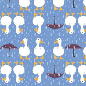 rainy_day_ducks