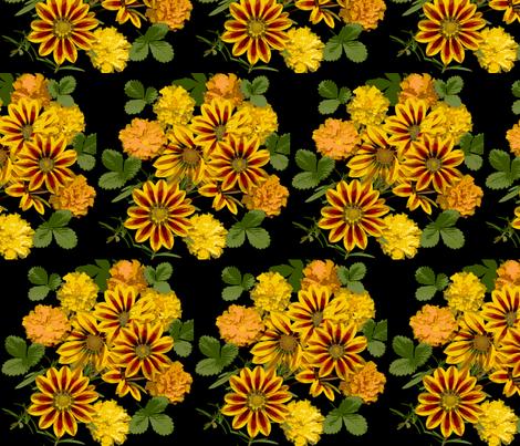 gazanias fabric by oakhilldesigns on Spoonflower - custom fabric