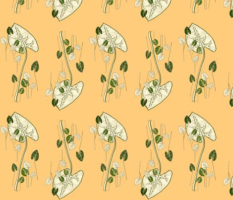 Double fiesta fabric by gigimoll on Spoonflower - custom fabric
