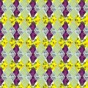 Rargyle_yellow_purple_blue_3_shop_thumb
