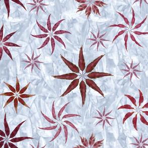 eucalyptus_leaves