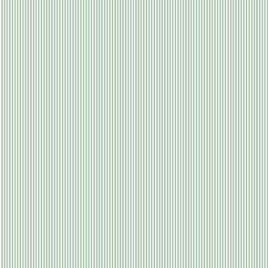 Multi Stripes - Mint