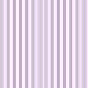 Multi Stripes - Purple