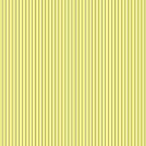 Multi Stripes - Yellow