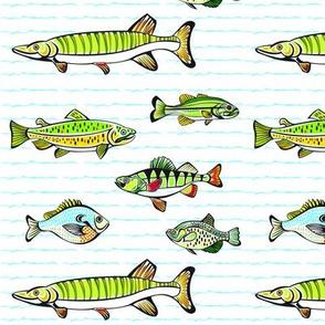 JKD_Fish-ed_13