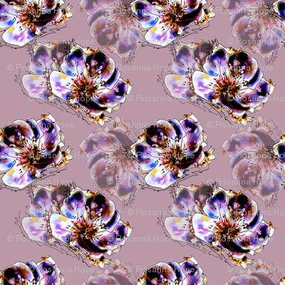 Floral Fantasy by Rosanna Hope