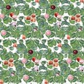 Rcollardgreens003_shop_thumb