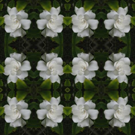 IMG_3278 - California Gardenia fabric by mmc2010 on Spoonflower - custom fabric
