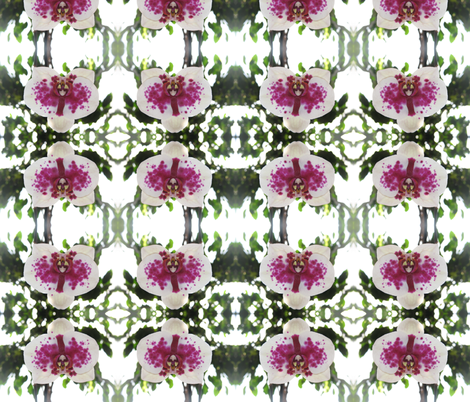 IMG_2983 -- Morning Orchid fabric by mmc2010 on Spoonflower - custom fabric