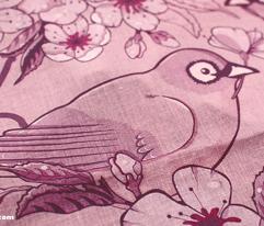 Birds and Sakura Blossoms