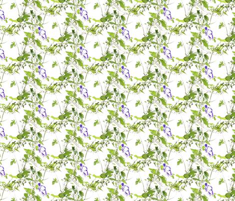 Morning Glories fabric by siya on Spoonflower - custom fabric
