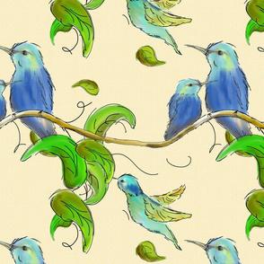 hummingbirds7