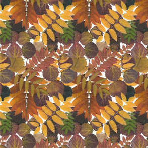 autumn_leaves_repeat