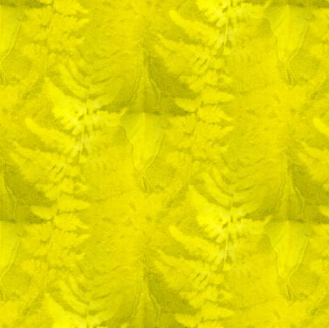 Sunprint Fern fabric by donna_kallner on Spoonflower - custom fabric
