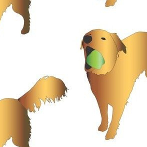Golden Retriever Green Apple