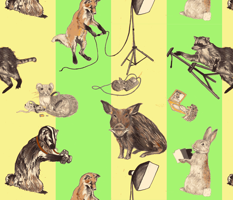 Wildlife Photographers fabric by madeleine13 on Spoonflower - custom fabric