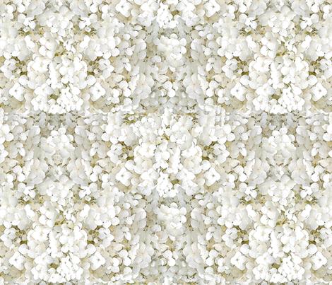 Hydrangeas (creamy white) fabric by hauteideas on Spoonflower - custom fabric