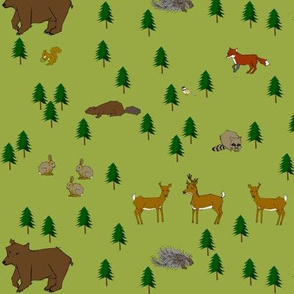 Pacific_NW_Woodland_Critters