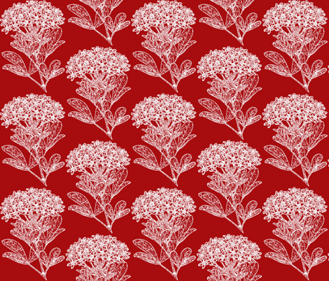 Winter Floral - Choisya fabric by hauteideas on Spoonflower - custom fabric