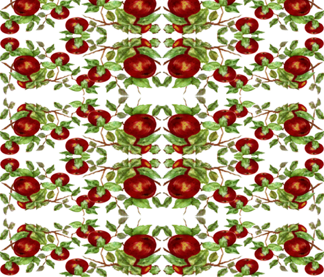 Apples fabric by paragonstudios on Spoonflower - custom fabric