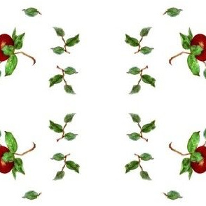 "Apple ""petite'"
