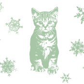 Rholly_in_the_snow_shop_thumb
