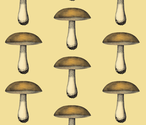 Mushroom fabric by dolphinandcondor on Spoonflower - custom fabric