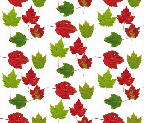 Leaf Fabric fabric by stephen_of_spoonflower on Spoonflower - custom fabric