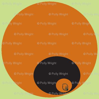 orange circles in circles on green