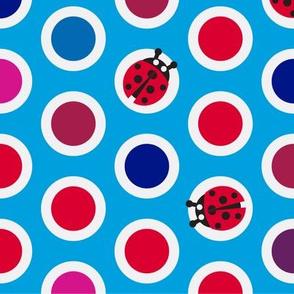 ladybird_spot_2