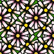 Rspotted_daisies_shop_thumb
