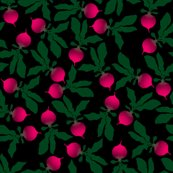 Rrrradishes_shop_thumb