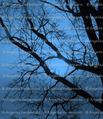 Blue Tree Magic